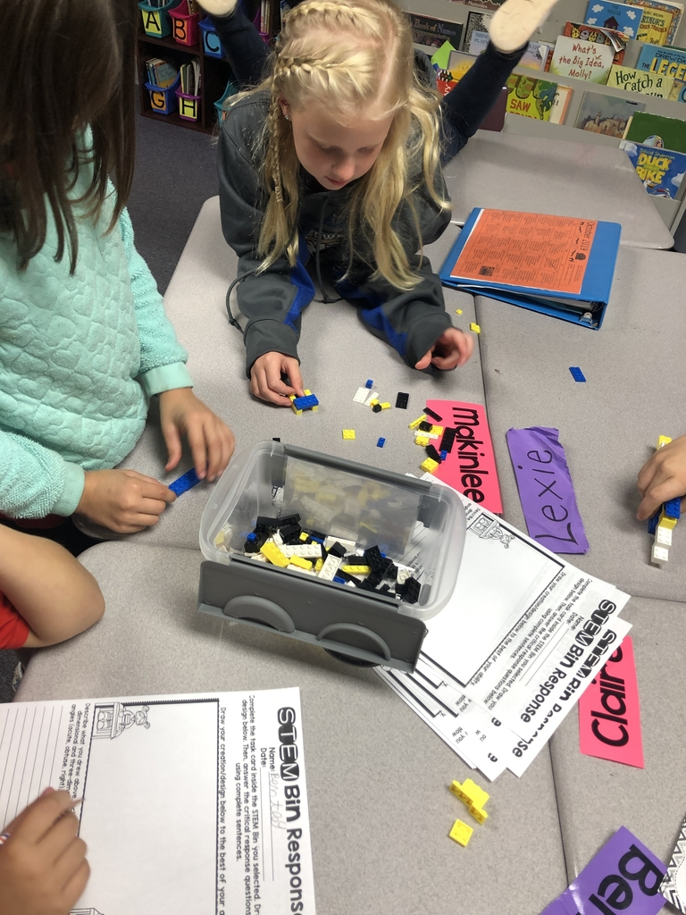 Their goal was to build a tunnel or a bridge using building blocks.